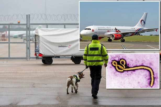 A passenger died at Gatwick after getting off a glight fromm Sierra Leone
