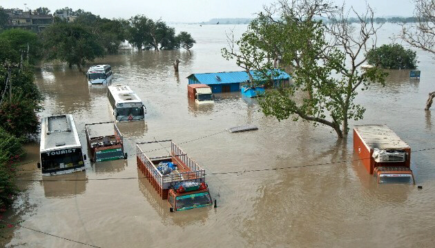 Buses and trucks submerged in rising waters of the Yamuna River
