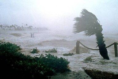 Leading edge of hurricane destruction signal giant tidal waves approaching