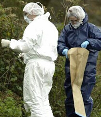 Investigations take place at the scene where two bodies were found