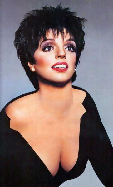 Singer Liza Minelli was taken to a New York Hospital after hitting her head Monday morning.