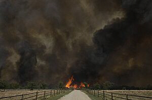 Smoke rises from an uncontrolled wildfire in Texas