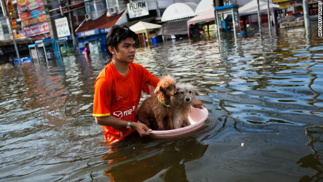 Thai resident floats pets as he makes his way through flooded streets